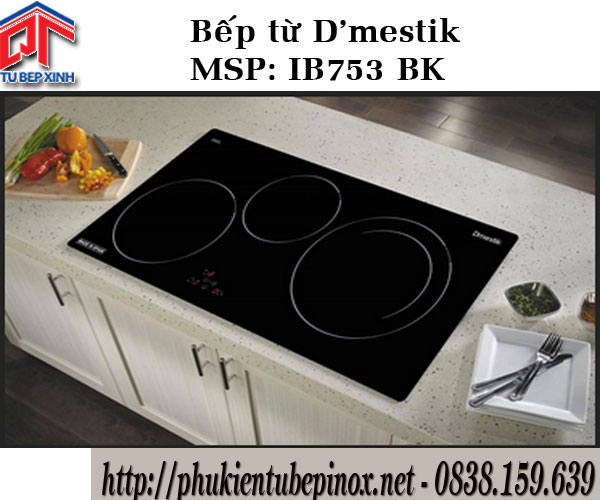 Bếp từ D'mestik IB753 BK